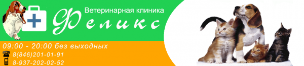 Логотип компании Феликс