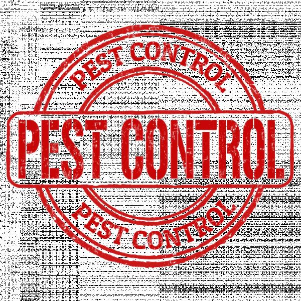 Логотип компании Pest Control Samara