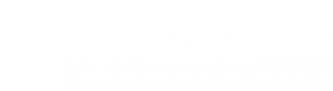Логотип компании Top Level