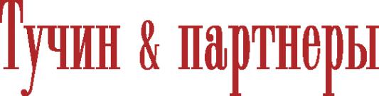 Логотип компании Тучин и партнеры