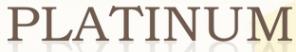 Логотип компании PLATINUM